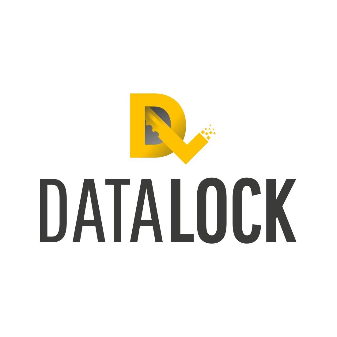 DataLock Elbowroom Graphics